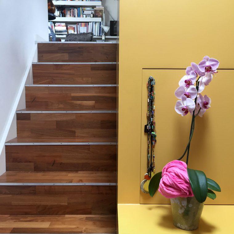 UrbanJungleBloggers - 1 Plant, 3 Stylings // colourliving